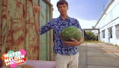 watermeloen.png